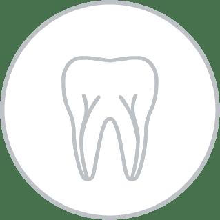 Endodontija